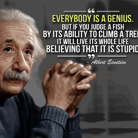 Image result for Everyone is smart in different ways. But if you judge a fish on its ability to climb a tree, it will spend its whole life thinking that it's stupid